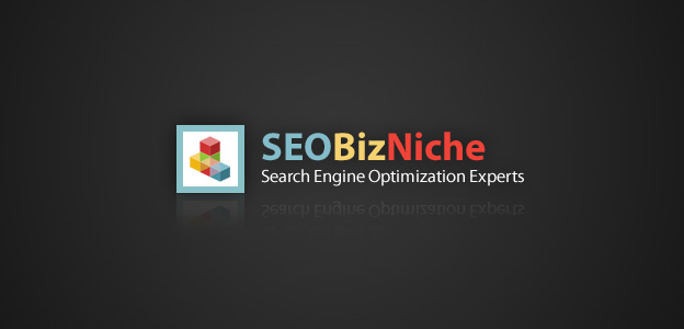 Projects: SEOBizNiche.com - Niche Advertising Strategies Website